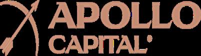 Andy King - Apollo Capital Group Ltd v3